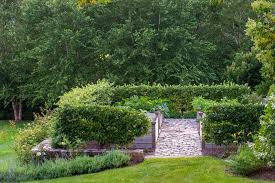 vegetable garden layout for a traditional landscape with a garden