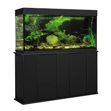 Gallon Aquarium Gallon Aquarium Stands Canopies Cabinets Petco