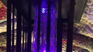 Outdoor Bug Lights by Solar Powered Outdoor Bug Zapper Youtube