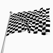 Checkered Racing Flags Close Up Black And White Checkered Racing Flag 50121 Flowers