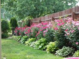 Pics Of Backyard Landscaping by Best 25 Residential Landscaping Ideas On Pinterest Simple