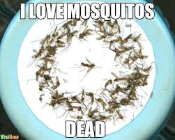 make homemade insect mosquito repellent visihow