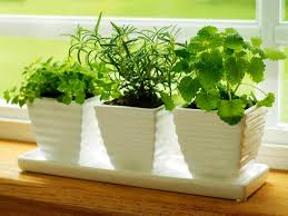 best herb planter ideas best home decor inspirations