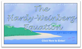 hardy weinberg equilibrium problems and solutions biology exams 4 u