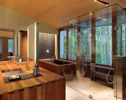 Transparent Bathtub Bathroom Nice Traditional Japanese Bathroom Interior Design Nice