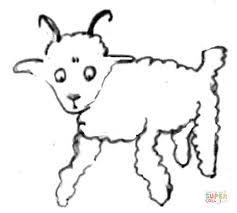 sheep ram horns u0027 coloring