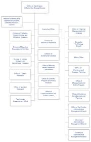 td garden floor plan heardhomecom mesmerizing organizational chart with remarkable