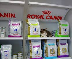 prescription pet food advanced care pet hospital saint cloud mn