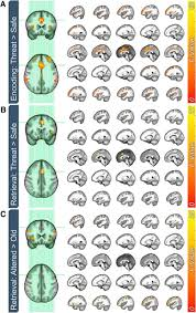 effect of threat on right dlpfc activity during behavioral pattern download figure