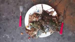Howtobasic by The Human Chocolate Challenge Feat Howtobasic Vomit Warning Fast