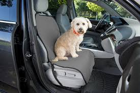 lexus amanda cute amazon com dog seat protector for cars front dog seat cover