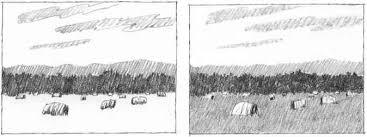 translating value sketches drawing nature joshua nava arts