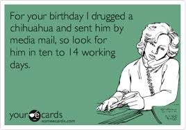 birthday ecards for him for your birthday i drugged a chihuahua and sent him by media mail