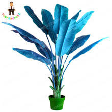popular ornamental banana plants buy cheap ornamental banana