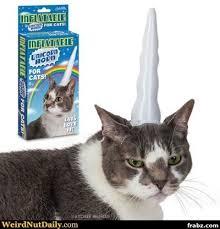 Unicorn Meme Generator - cat unicorn meme generator captionator caption generator frabz