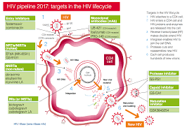 hiv pipeline 2017 summary version htb hiv i base