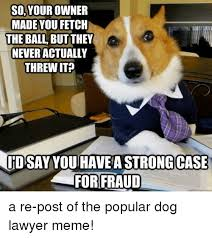 Dog Lawyer Meme - 25 best memes about dog lawyer dog lawyer memes