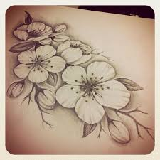cherry blossom small flower pencil and in color