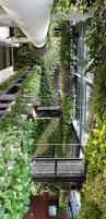 an unexpected hanging garden singapore agfacadesign u0026 tierra