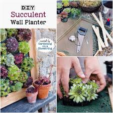 diy succulent wall planters empress of dirt