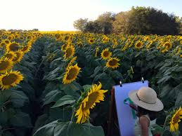 Grinter Farms Sunflower Art Activities For Kids Sturdy For Common Things