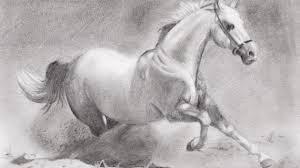 horses pencil drawings drawing pencil