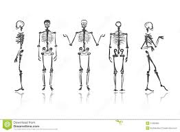 medical anatomy sketches stock image image of nurse 37534069