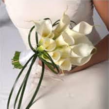 white calla lilies gorgeous white calla bridal bouquet global