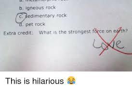 Pet Rock Meme - b igneous rock c sedimentary rock pet rock extra credit what is the