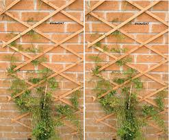 4 new 2 x 6ft wooden expanding garden climbing plant trellis fence