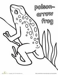 clip art frogs pasco poison dart frog coloring page preview