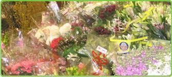 flowers san antonio san antonio flower company san antonio florist flowers in san