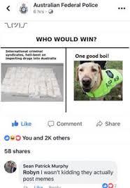 Dog Text By Memeemma Meme - 18 tumblr posts that ll make you feel like you re high random