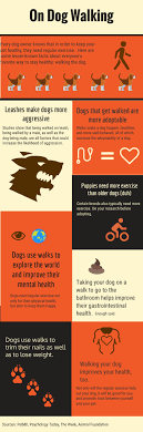 how to make dog walking flyers Juve cenitdelacabrera
