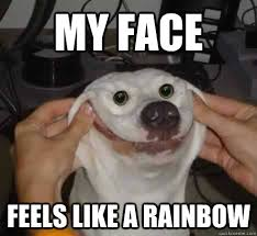 Smiley Memes - my face feels like a rainbow smiley dog quickmeme