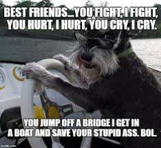 Cat Buy A Boat Meme - smiley cat meme generator imgflip memes i ve made pinterest