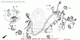 honda dio scooter wiring diagram tamahuproject org