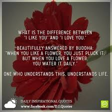 Flower And Love Quotes - 29 best touching quotes images on pinterest thoughts dr who