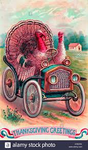 thanksgiving greetings turkeys driving an car happy stock