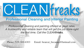 Business Cards Painting Cleanfreaks Business Card