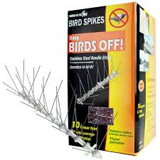 How To Get Rid Of Pigeons Off My Roof by Amazon Com Bird X Stainless Steel Bird Spikes Kit Covers 10