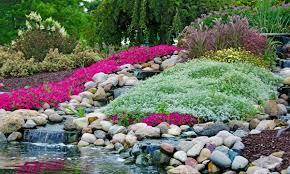 Rock Garden Features How To Plant A Rock Garden And Illuminate Garden Features Smart Tips