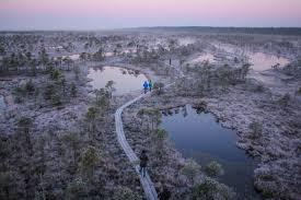 kemeri national park latvia travel