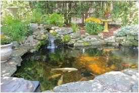 backyards charming summit nj 07901 koi pond water garden