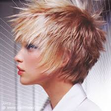 pictures pf frosted hair short crop hairstyle with frosted spikes