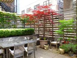 Inexpensive Backyard Privacy Ideas 22 Fascinating And Low Budget Ideas For Your Yard And Patio