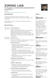 It Executive Resume Samples by Temp Resume Samples Visualcv Resume Samples Database