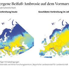Pollen Map Heuschnupfen Roggenallergie Pollen Kalender Symptome U0026 Infos