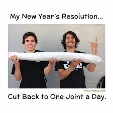Funny New Years Memes - new year s resolutions for stoners funny weed memes weed memes