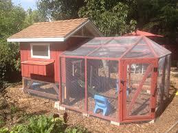 Backyard Chicken Run by Pasadena Coop And Run Backyard Chickens